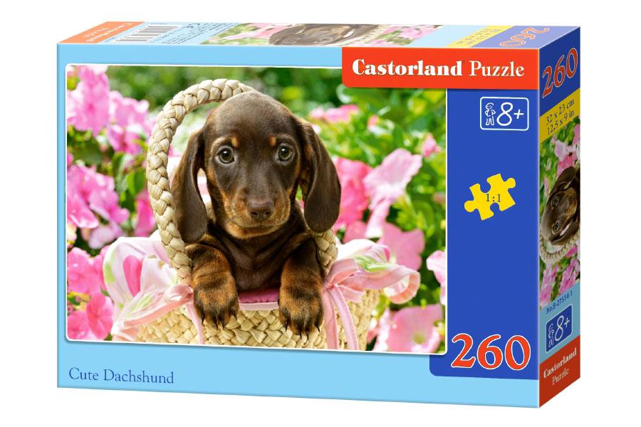 Пазл Касторленд 260 27514