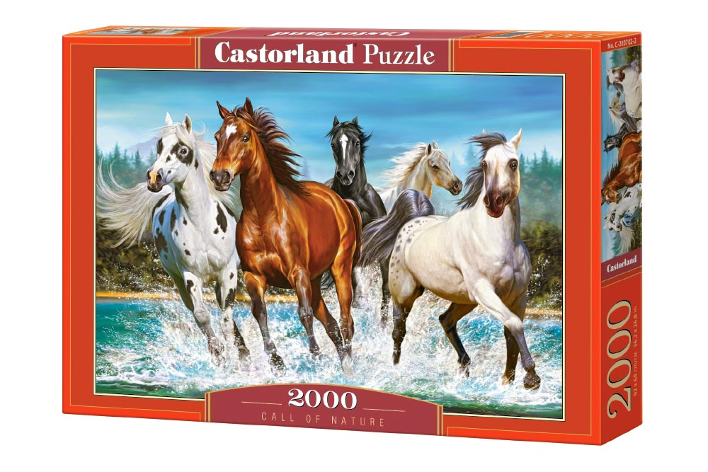 Пазл Касторленд 2000  200702