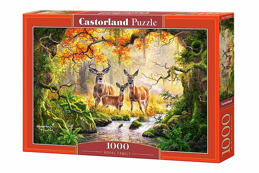 Пазл Касторленд  1000 104253