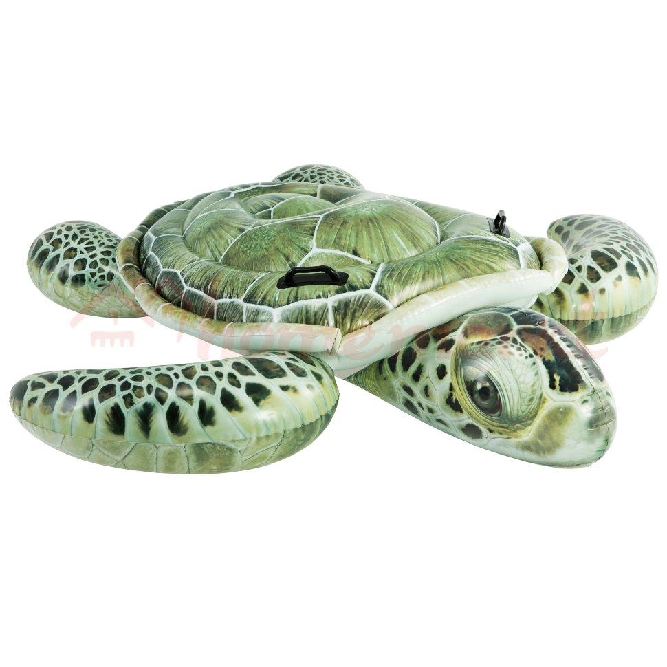 Плотик настоящая черепаха 57555