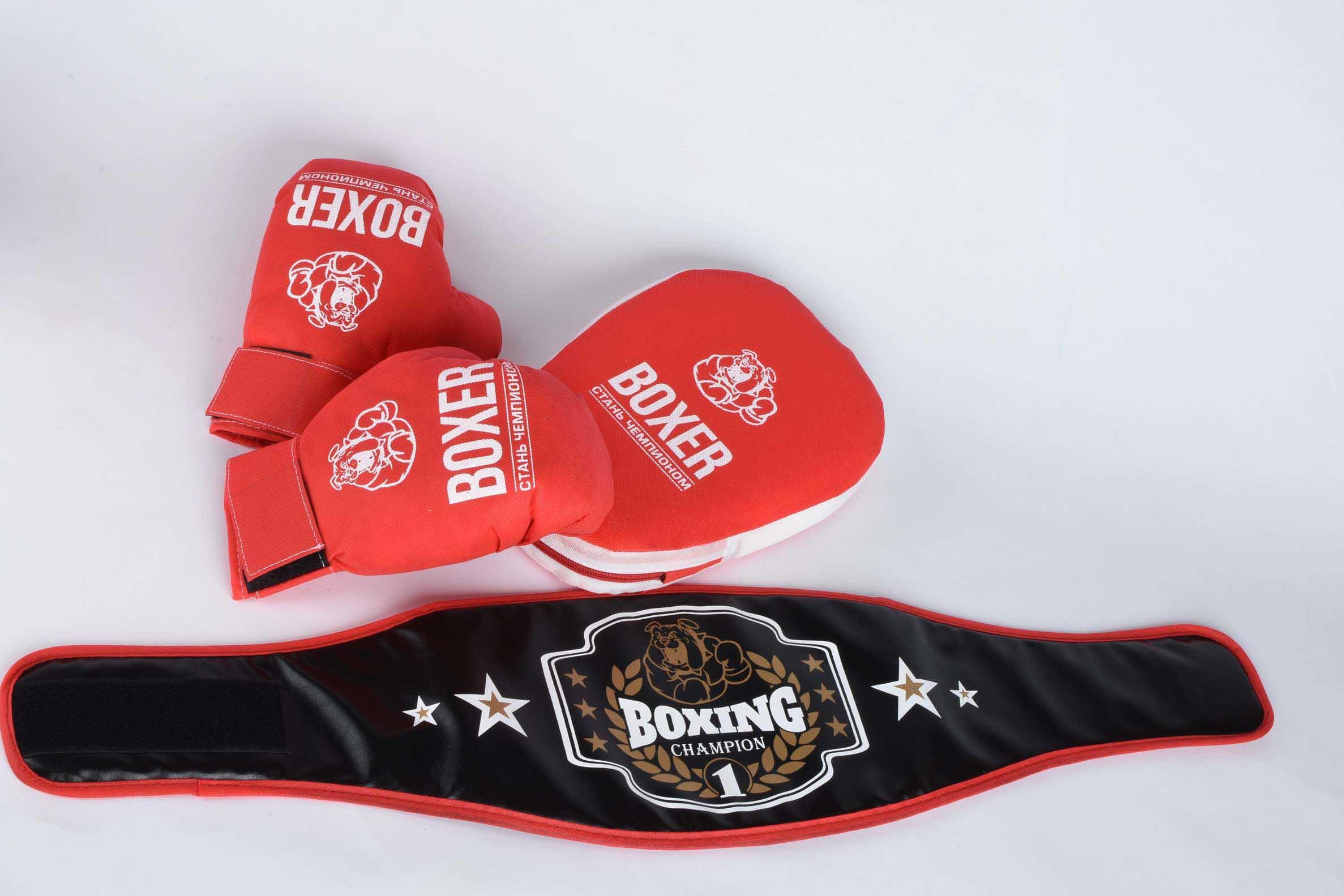 Боксерский набор(лапа пояс,перчатки) 21539