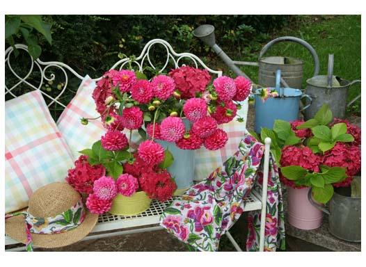 Раскраска на картоне А3. Красивые розовые цветы (Арт. Р-2301)