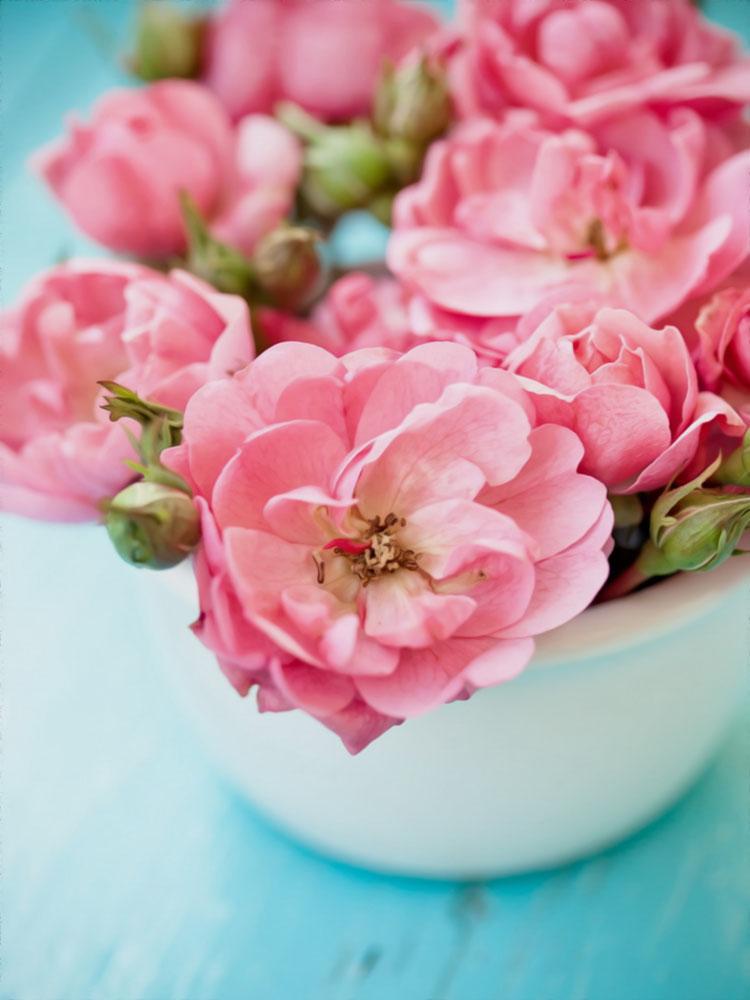 Холст с красками по номерам 22х30 см. Очаровательные цветы (Арт. HS256)