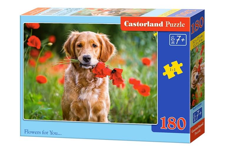 Пазлы Castorland 180  018284