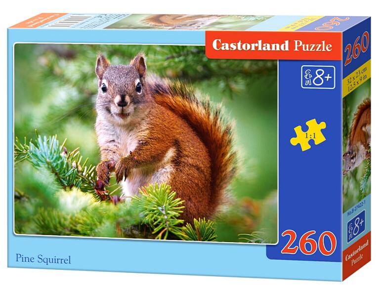 Пазлы Castorland 260 27422