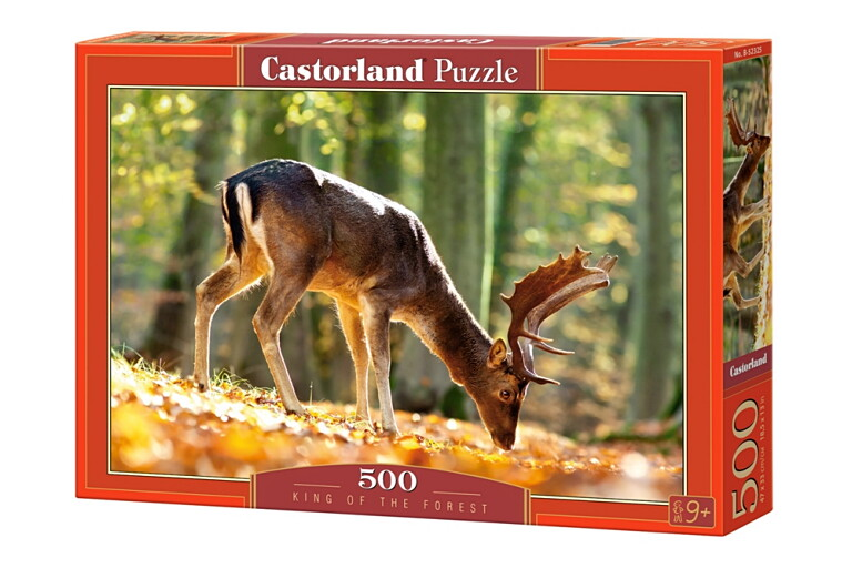 Пазлы Castorland 500  52325
