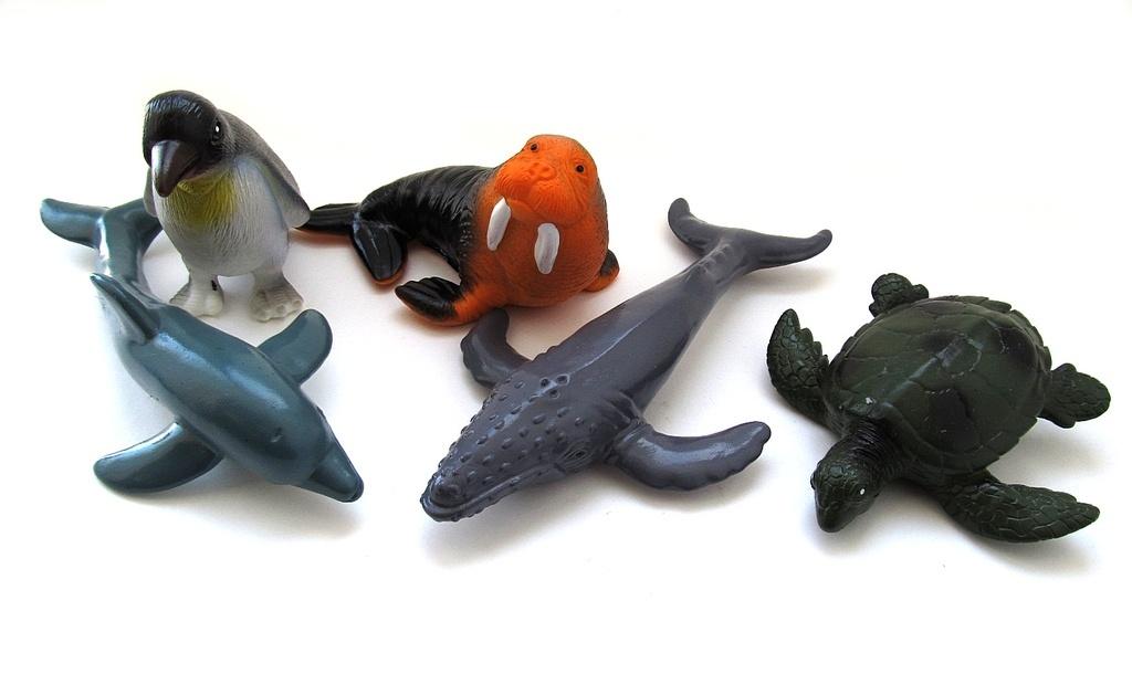 Морские животные 104А