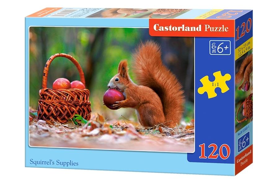 Пазлы Castorland 120 midi  13302