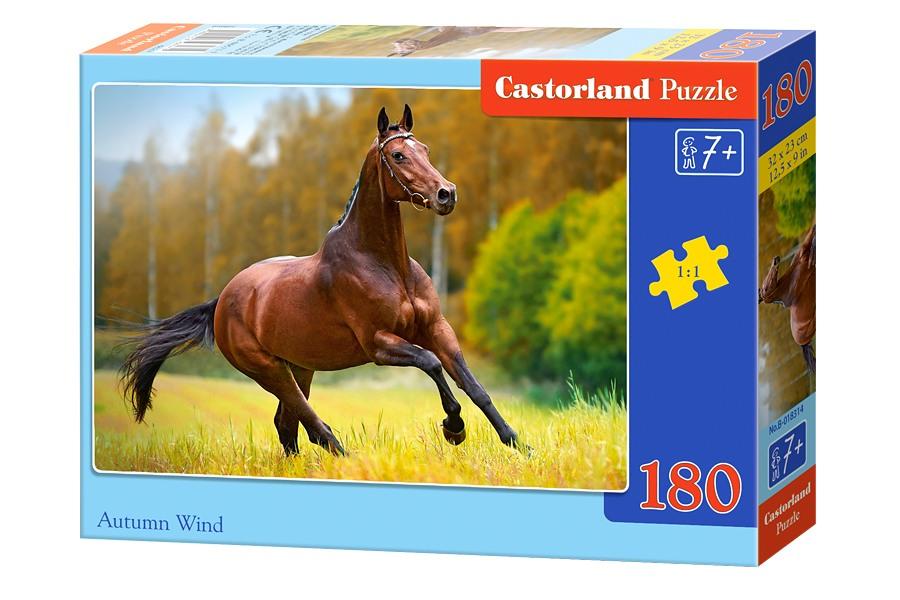 Пазлы Castorland 180 018314
