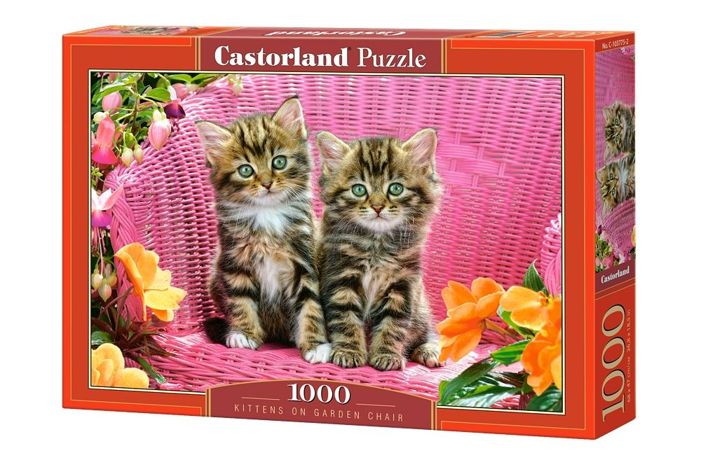 Пазлы Castorland 1000 103775