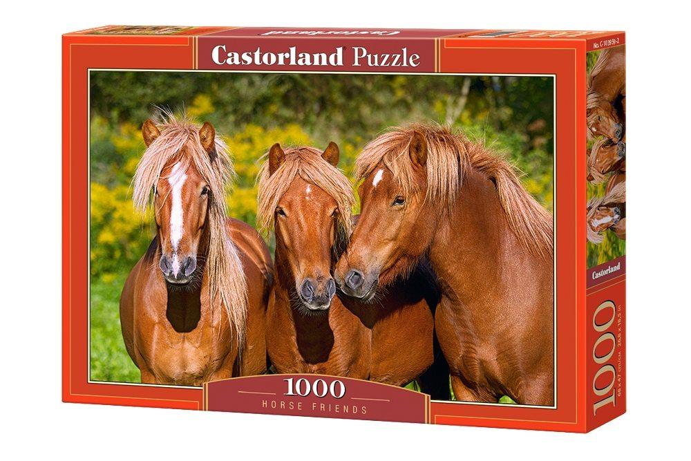 Пазлы Castorland 1000 103959