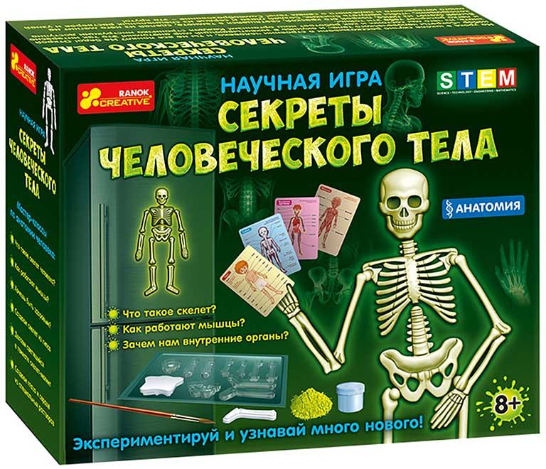 12115017Р Анатомия. Скелет человека