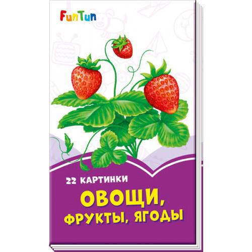 F1246010Р Сиреневые книжки - Овощи, фрукты, ягоды