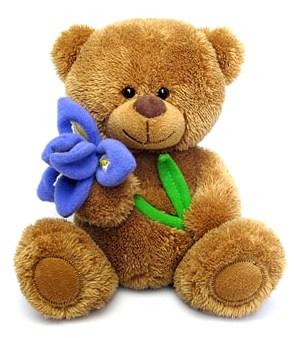 Медвежонок Сэмми с ирисом муз 8733M