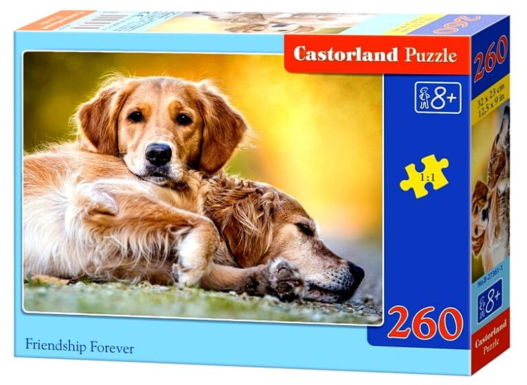Пазлы Castorland 260 27361