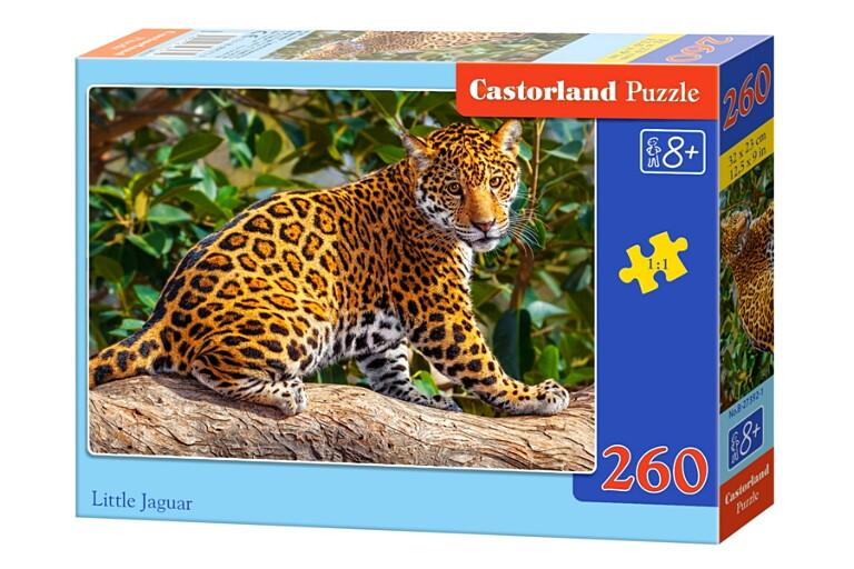 Пазлы Castorland 260 27392