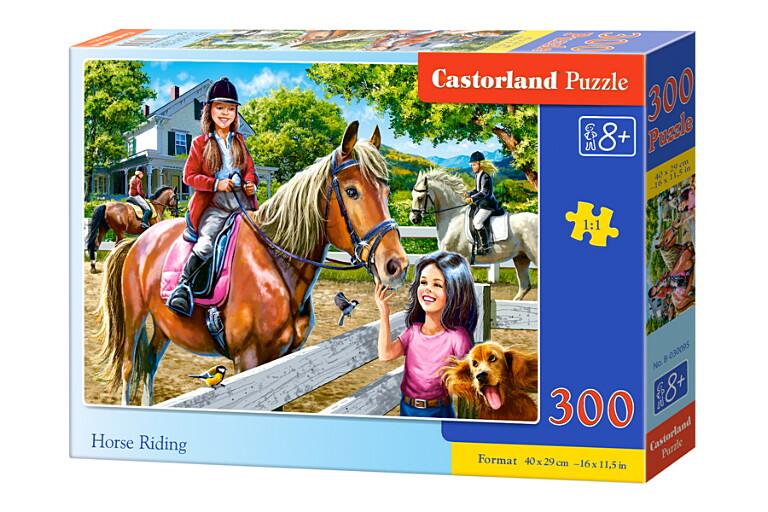 Пазлы Castorland 300  030095