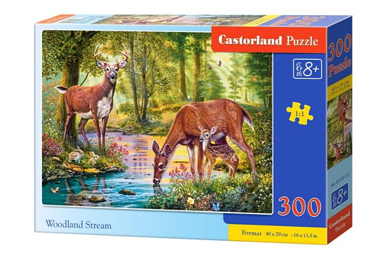 Пазлы Castorland 300  030132