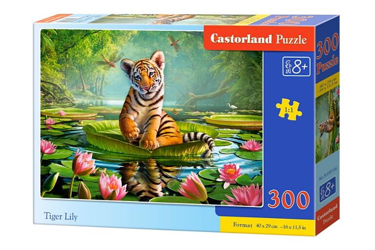 Пазлы Castorland 300  030156