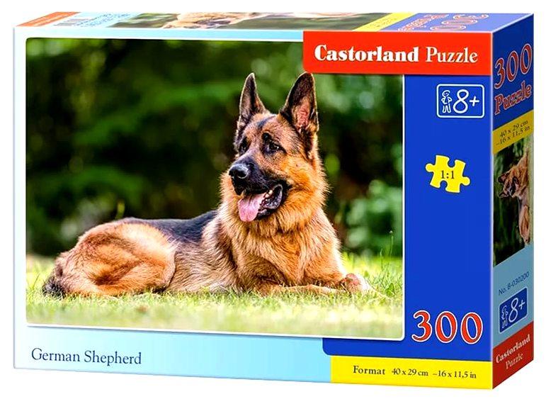 Пазлы Castorland 300   30200
