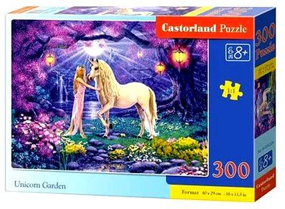 Пазлы Castorland 300   30224