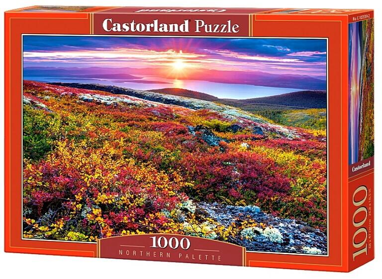 Пазлы Castorland 1000 103539