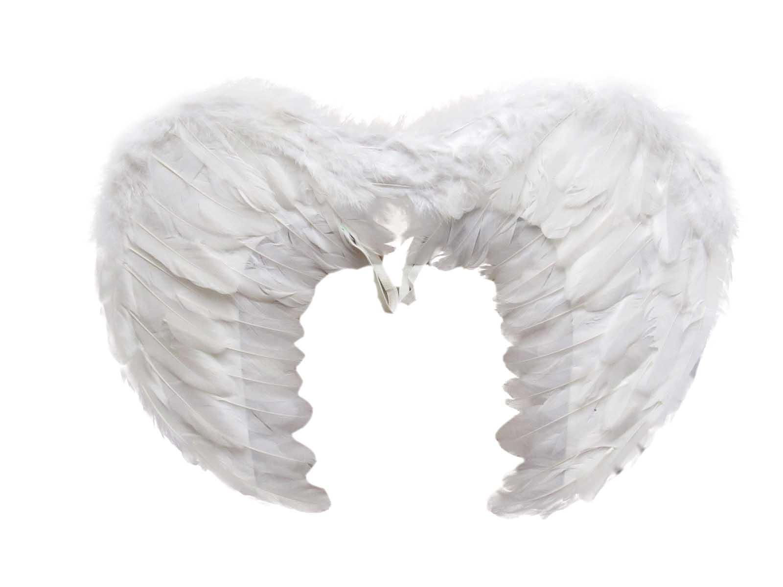 Крылья бабочки 50*40