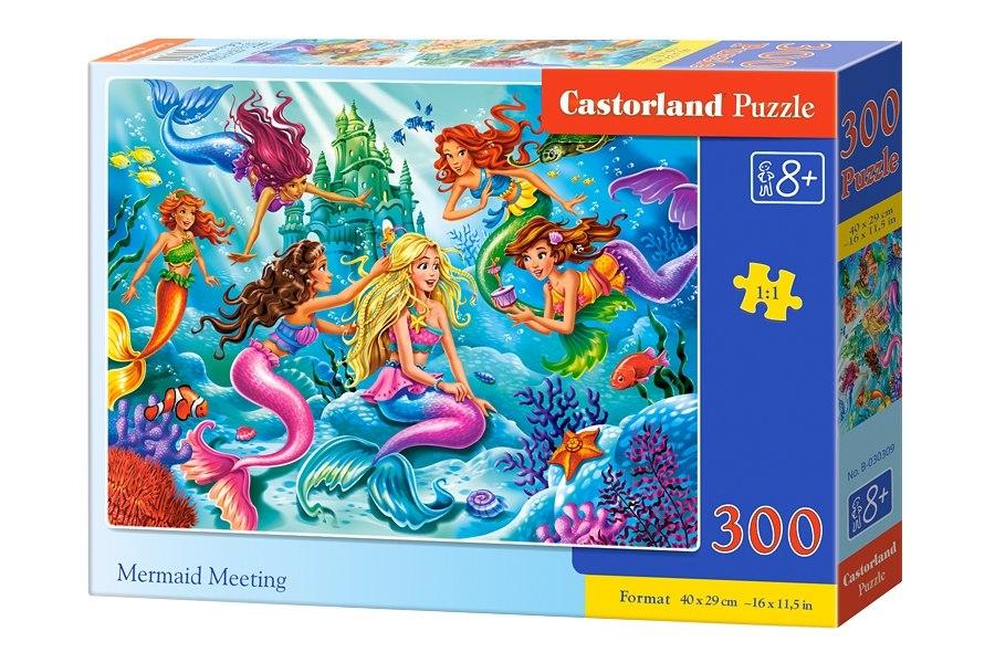 Пазлы Castorland 300  030309