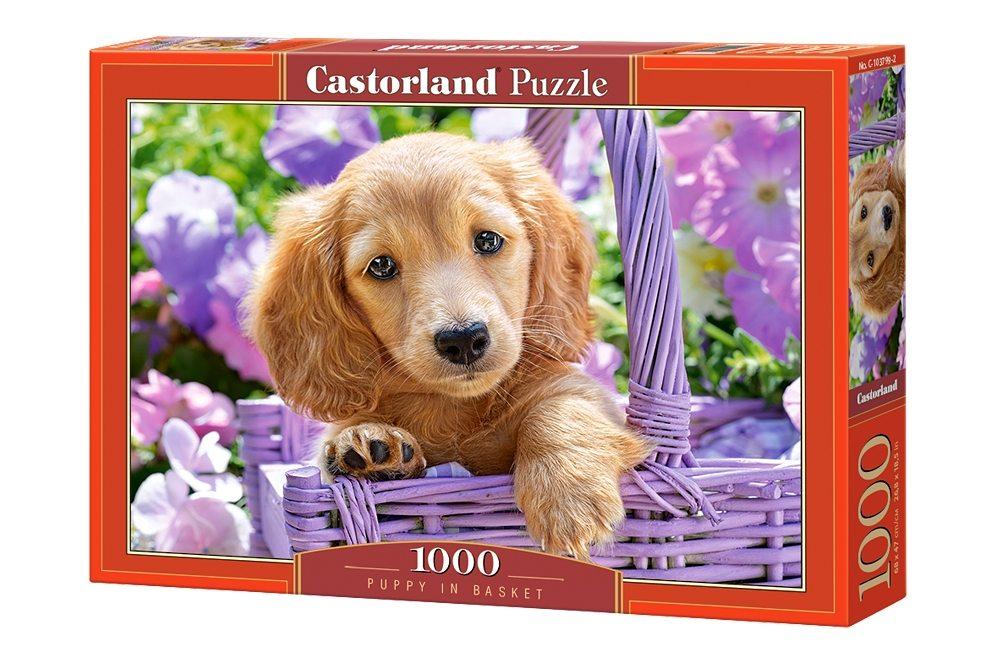 Пазлы Castorland 1000  103799